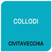 CV-Collodi